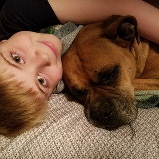 My Sons Best Friend Needs Your Help