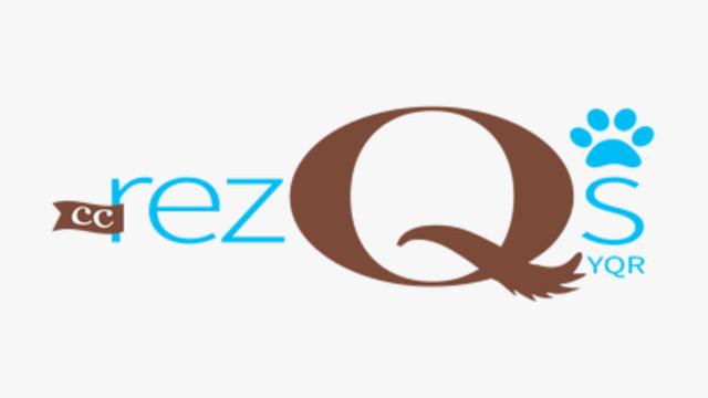 Help CC RezQs raise money needed for rescue dogs by CC RezQuers