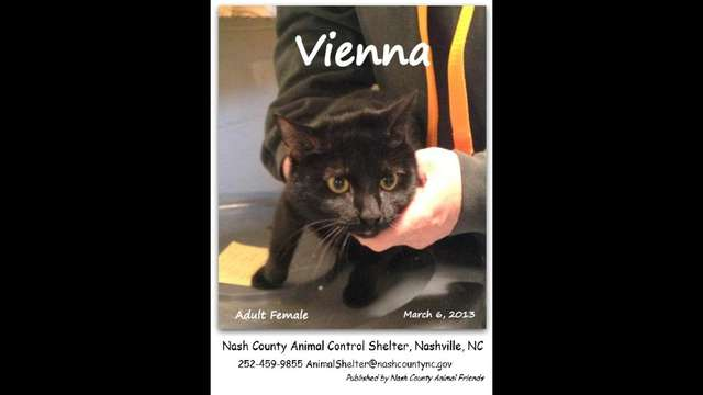 Your Sponsorship Can Help Save VIENNA by Promoting Animal Welfare in NC