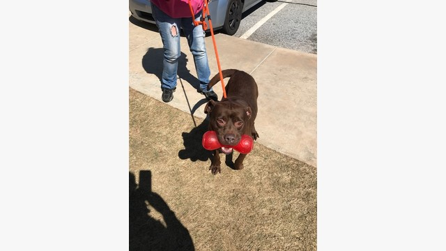 A256 Mr  Wilson - Previous urgent list Clayton Co by
