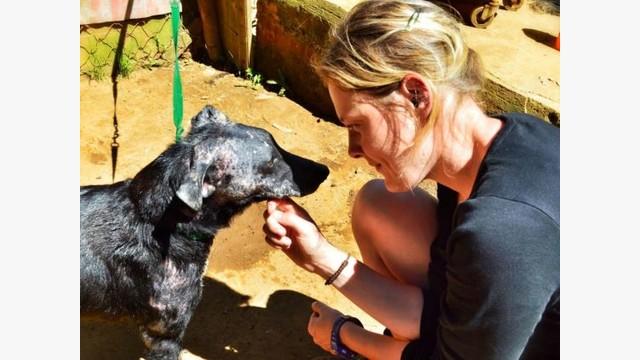 animal shelter volunteer Volunteer application form animal house shelter 11am - 7pm mon - fri & sun 9am - 7pm saturday 13005 ernesti rd, huntley, il 60142.