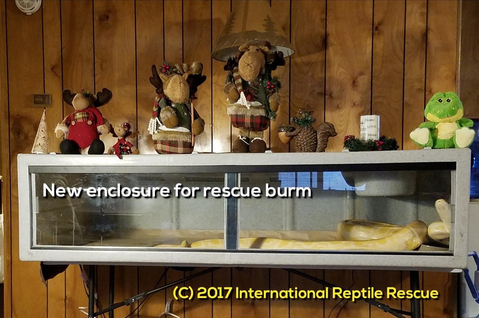 International Reptile Rescue, Inc  - FundRazr