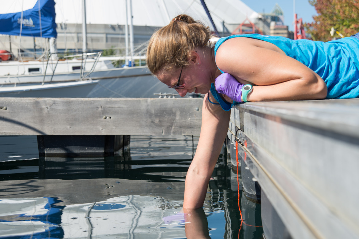 Elise sampling the water in Toronto's harbour