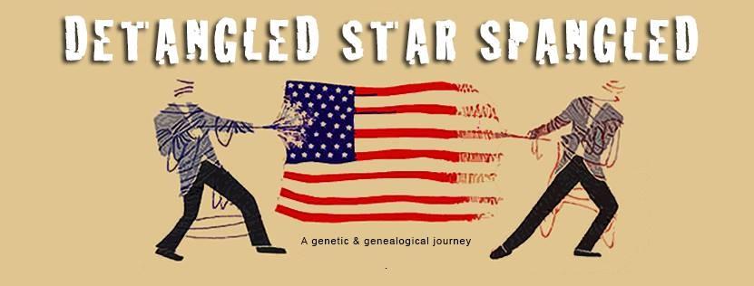 Detangled Star Spangled